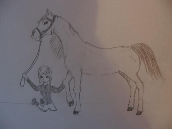 hevonen kuva hotmail tilin palautus